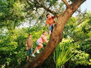 Schöne Plätze in der Natur für Familien / NaturOrte