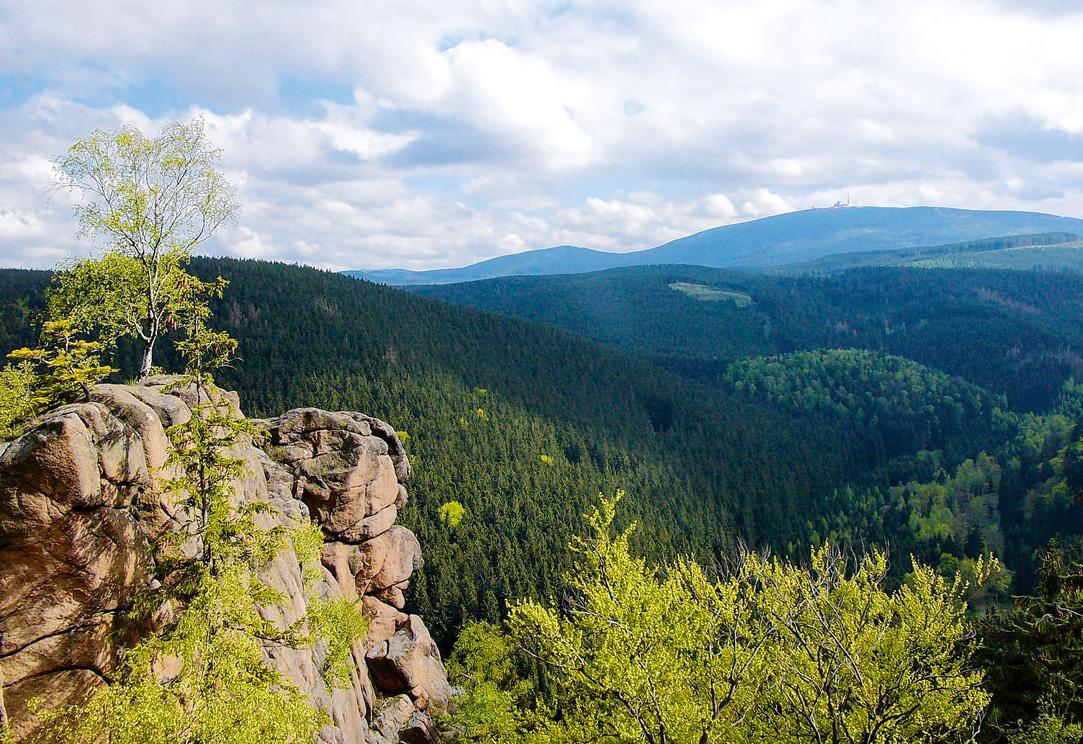 Wandern mit Kindern im Nationalpark Harz – Magazin SCHULE